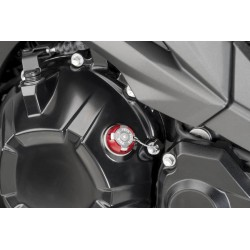 YAMAHA XSR900/ABARTH TAPON CARTER PUIG